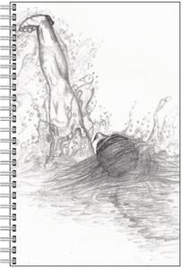 Backstroker